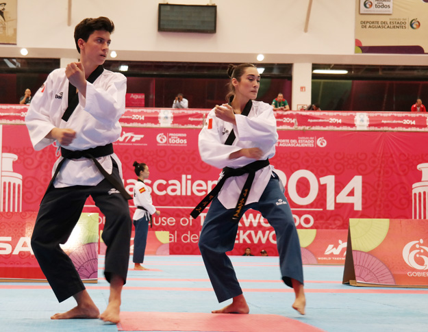 Taekwondo Poomsae Competition Come to 2019 Pan Am Games in Lima, Peru